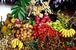 buah-buahan-2