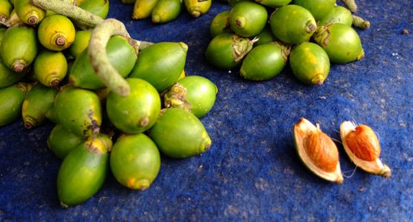 buah-pinang