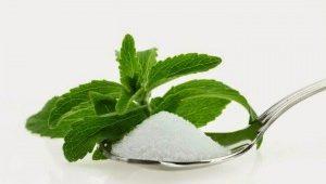 daun-stevia