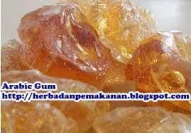 gum_arabic