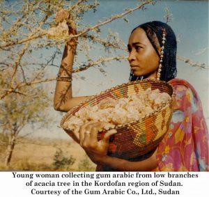 gum_arabic_woman